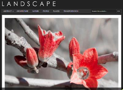 landscape wordpress theme for photography