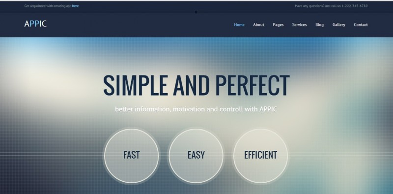 appic business technology website template