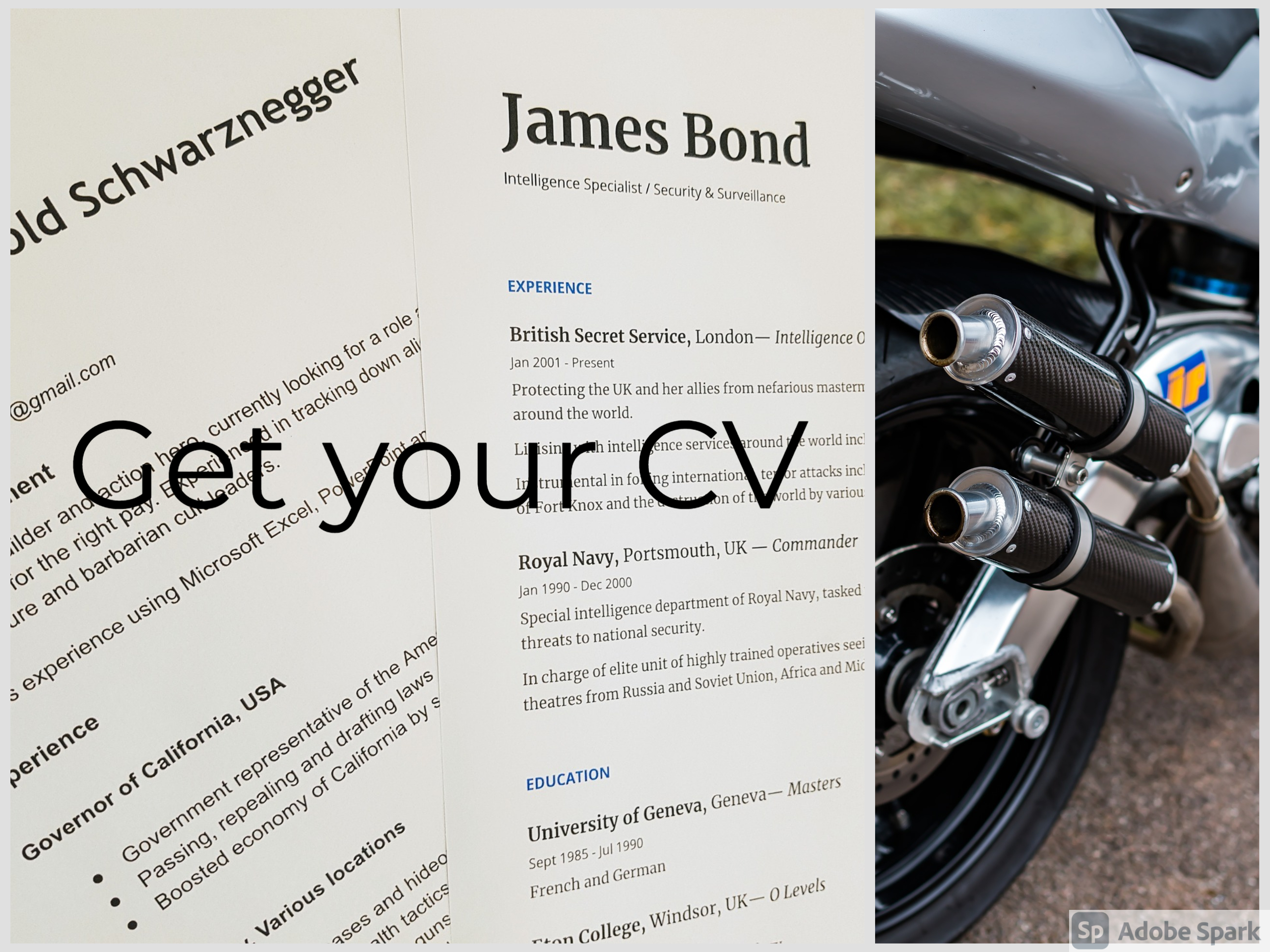resume services for freshers